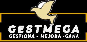 GestMeGa Servicios Financieros